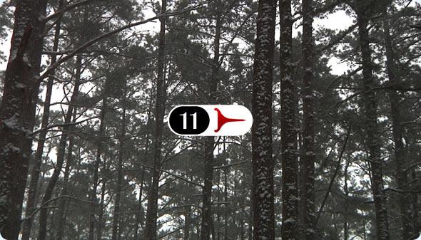 Long Shits By Evan Wilder 11 - Powdery Pines