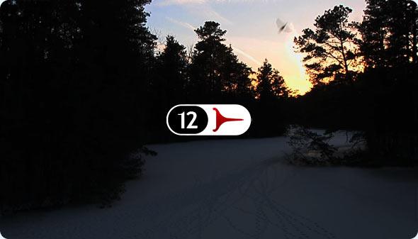 Long Shits By Evan Wilder 12 - Frozen Fade