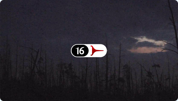Long Shits By Evan Wilder 16 - Goshen Pond In Twilight