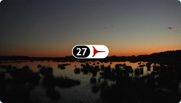 Long Shits By Evan Wilder 27 - Bogs Of Franklin Parker Preserve At Nightfall